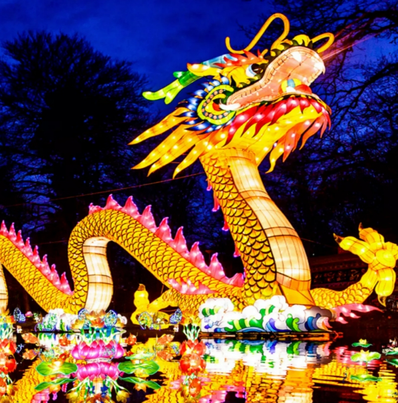 The Dragon Lights Festival - Albuquerque @  Expo New Mexico | Albuquerque | New Mexico | United States